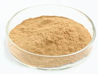 Oyster mushroom powder supplier