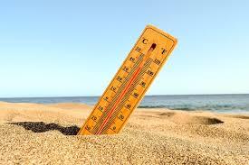 Temperatur tanah