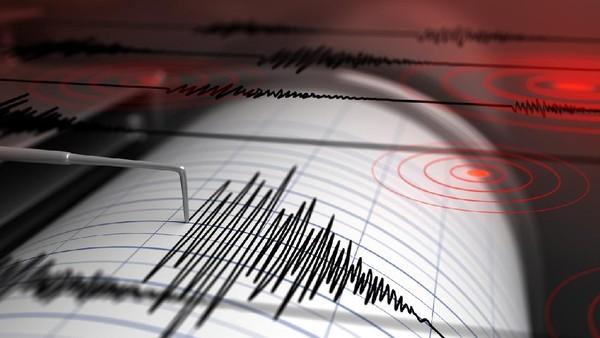 Gempa M 6,8 Guncang Vanuatu, Picu Peringatan Tsunami