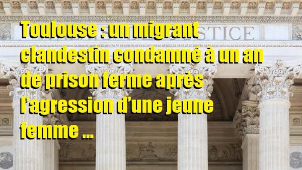 Toulouse : un migrant clandestin condamné à un an de prison ferme après l'agression d'une jeune femme