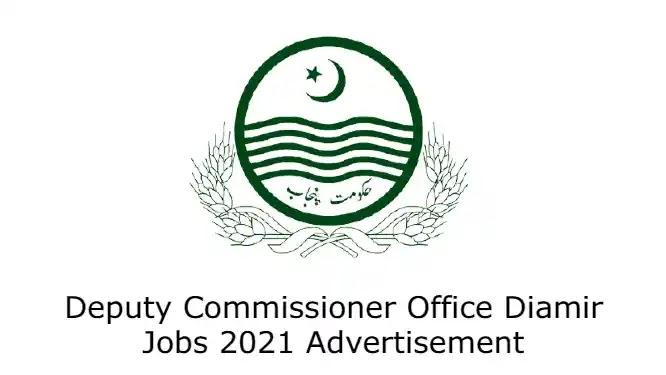 Deputy Commissioner Office Diamir Jobs 2021 Advertisement