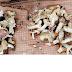 Sargi Phooto or Mushroom,It is one of the important part of Bastar's cuisin