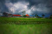 Pemerintah Daerah Diwajibkan Bina Pondok Pesantren