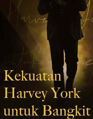 Novel Kekuatan Harvey York untuk Bangkit Full Episode
