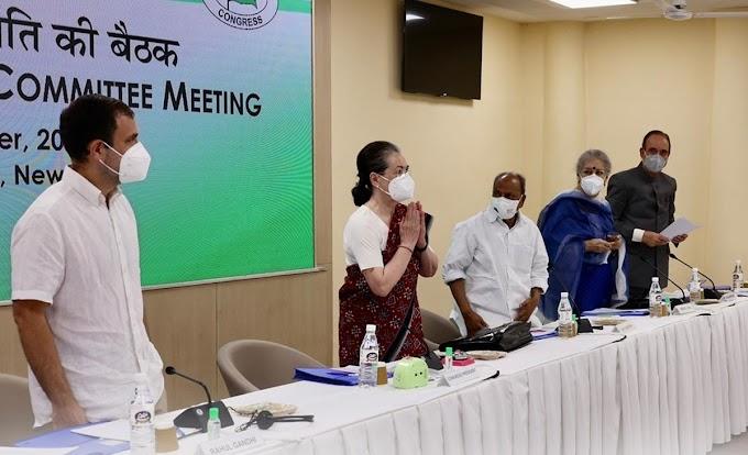 गुजरात के कांग्रेस नेताओं से मिले राहुल गांधी, विधानसभा चुनाव के लिए पार्टी को मजबूत करने को कहा