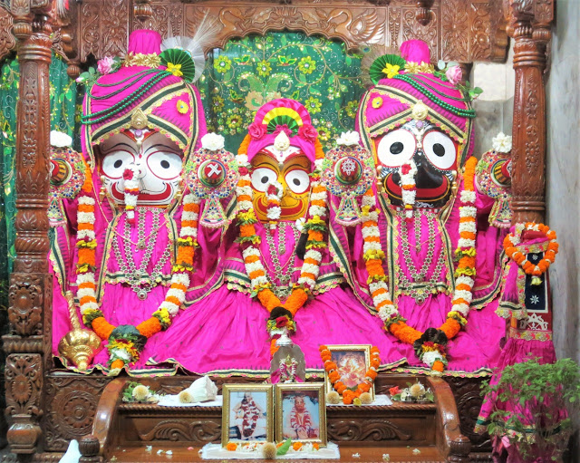 Lord Jaganath , Devi Subhadra and Lord Balabhadra  decorated in Pink