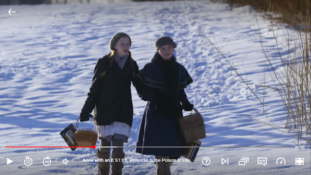 Anne with an E Series Review: A Hidden Gem on Netflix
