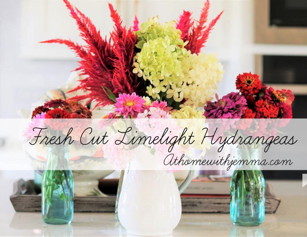 Garden-vignette-hydrangea-limelight-decorating-homemaking-inspiration
