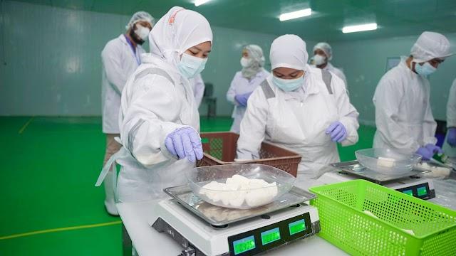 Naik 135%, Nilai Ekspor Produk Olahan Singkong Tahun 2020 Capai US$9,7 Juta