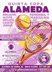 Tenis Alameda Osuna