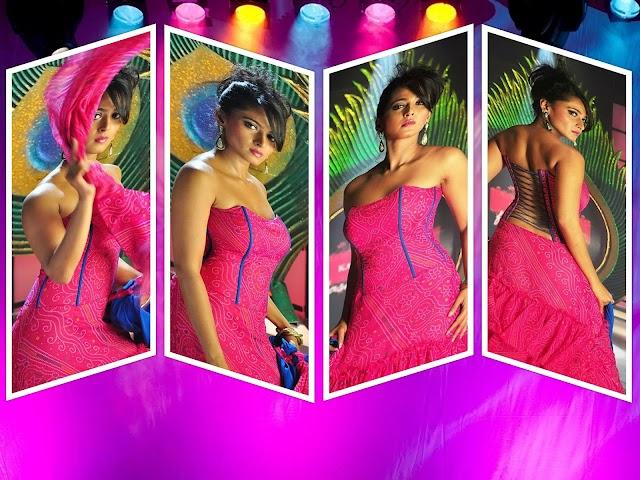 Anushka Shetty Glam Movie Stills Gallery Panchakshari (2010)Movie Gallery