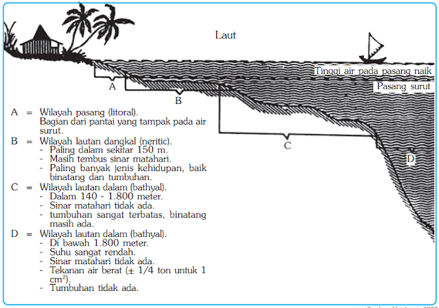 Pembagian laut berdasarkan kedalamannya