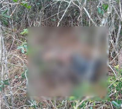 Piatã: Corpo de homem encontrado na  localidade de Gritador