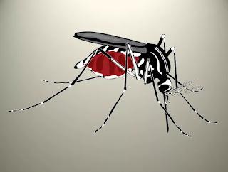 World Mosquito Day(विश्व मच्छर दिवस): 20 August