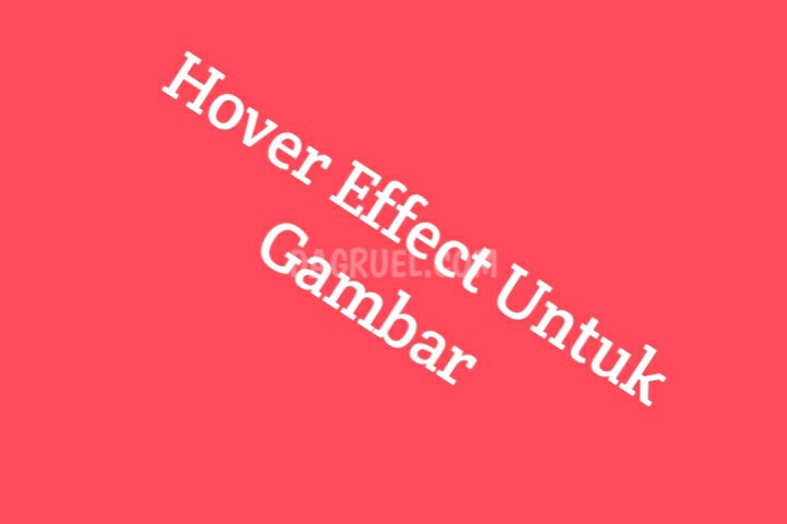 Effect Hover Pada Gambar