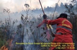 Karhutla di Kabupaten Samosir, 15 Hektare Hangus Terbakar