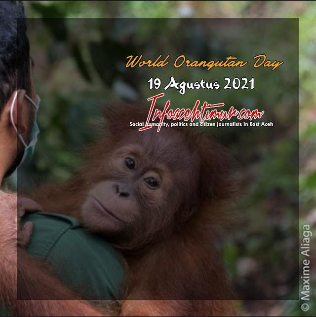 Selamat World Orangutan Day