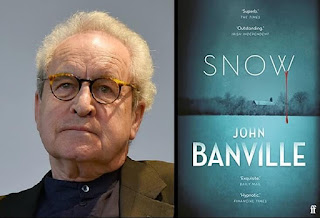 Best Mystery Novel: Snow - John Banville