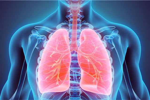 HOW TO KEEP LUNG HEALTH