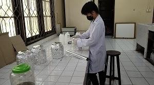 Fraksinasi merupakan proses penarikan senyawa dari hasil ekstraksi yang memanfaatkakn dua jenis pelarut yang tidak saling bercampur.