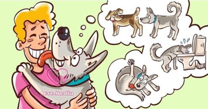 ခွေးလေးတွေရဲ့ ထူးဆန်းတဲ့ အပြုအမူ (၈) ခု