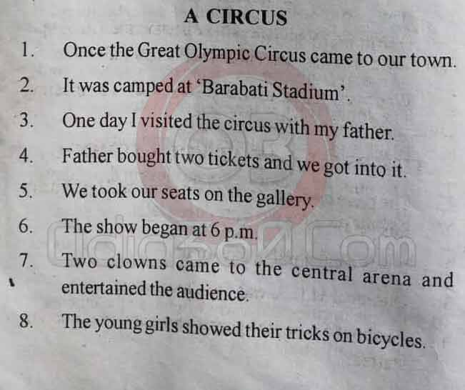 A Circus - 10 Lines Essay in English Language for Juniors