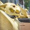 Blusukan Gedung Singa, Gedung Misterius Kawasan Kampung Eropa Surabaya