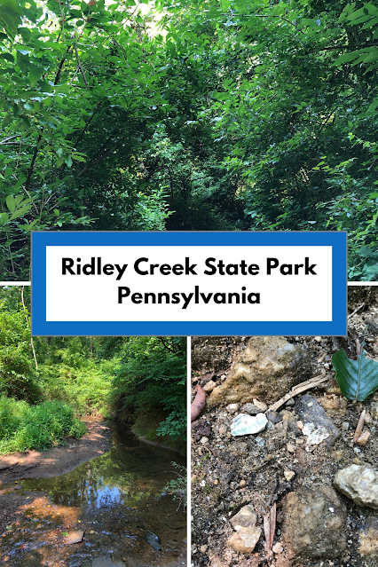 Trekking Through the Dense Forest, Exploring Ravines and Crossing Creeks at Ridley Creek State Park in Pennsylvania