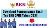 Download Hasil Tes SKD CPNS Tahun 2021 Semua Kementerian Instansi Lembaga Negara PDF