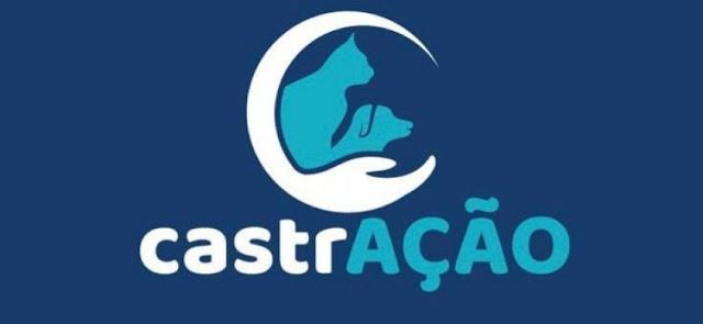 Prefeitura de Patos vai continuar castração de cães em parceria com UFCG após desistência da Adota Patos