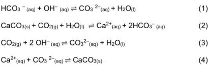 As equações a seguir descrevem os fatos citados, embora não estejam na ordem sequencial em que ocorreram