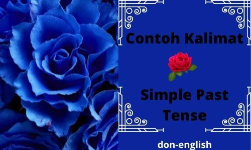 Contoh Kalimat Simple Past Tense dan Terjemahan Lengkap