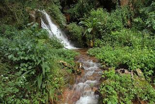Imagem: Preservar nascentes para aumentar reservatórios de água