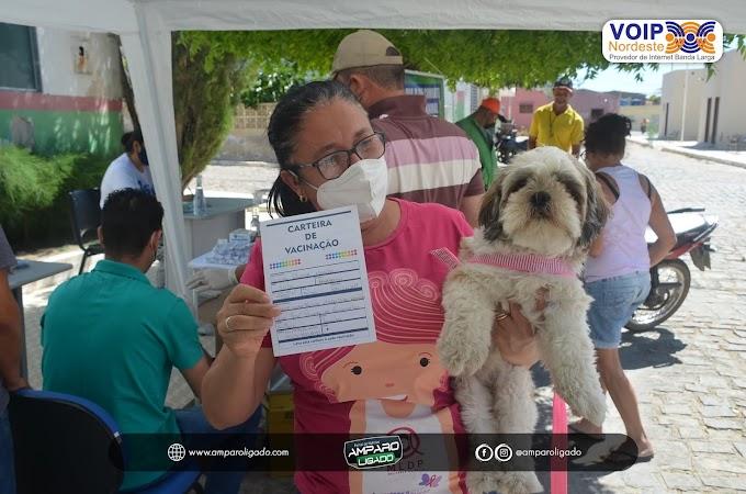 Prefeitura de Amparo realizou dia D de Vacinação Antirrábica