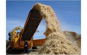 Faktor-faktor yang Mempengaruhi Biomassa