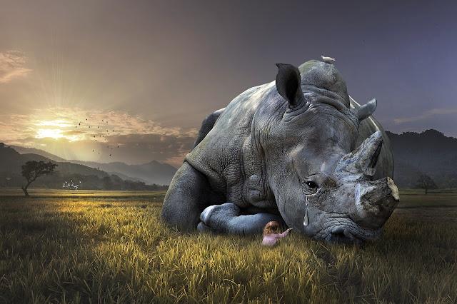 Upaya Penanggulangan Kerusakan Alam Flora dan Fauna