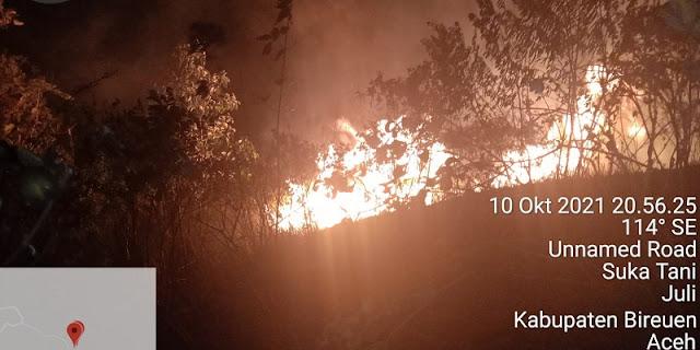 Sempat Menghanguskan 7 Hektar Hutan dan Lahan Warga, BNPB Minta Pemda Aceh Waspadai Kebakaran Lanjutan