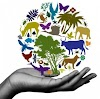 11 Bio Botany Book Back One Mark Test [ Tamil & English ]