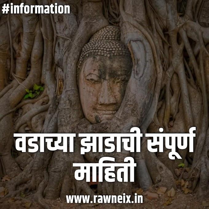 🌳 वडाच्या झाडाची संपूर्ण माहिती - Banyan Tree In Marathi