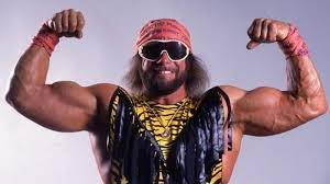 Randy Savage Net Worth, Income, Salary, Earnings, Biography, How much money make?