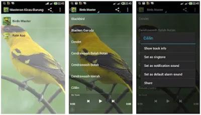 Aplikasi Suara Burung