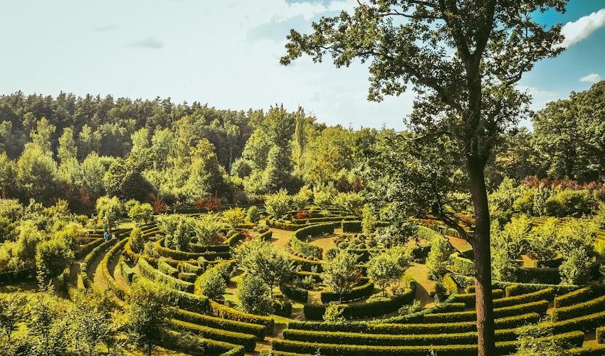 Zaczarowany Ogród w Raciborzu - mało znana atrakcja na Śląsku. Aż 5 powodów dlaczego warto ją odwiedzić