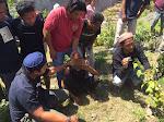Narkoba Lagi, Warga Monggo Bima Ditangkap di Dompu