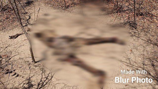 Corpo de um homem é encontrado com marcas de tiros na Estrada da Raiz em Mossoró