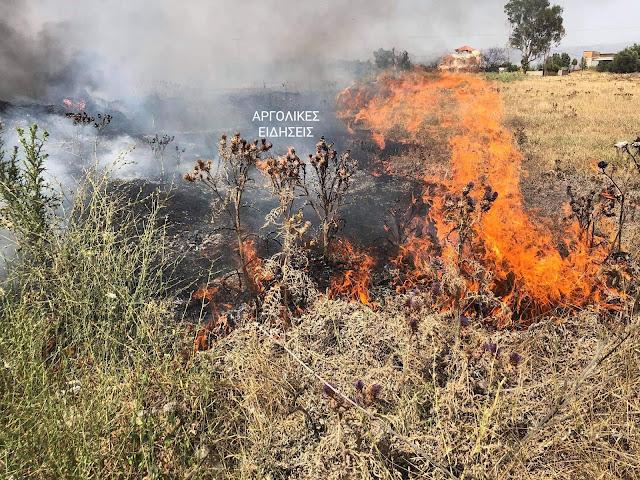Φωτιά στην περιοχή του Αργολικού