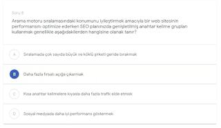 Arama motoru sıralamasındaki konumunu iyileştirmek amacıyla bir web sitesinin performansını optimize ederken SEO planınızda genişletilmiş anahtar kelime grupları kullanmak genellikle aşağıdakilerden hangisine olanak tanır?   (B)  Daha fazla fırsatı açığa çıkarmak