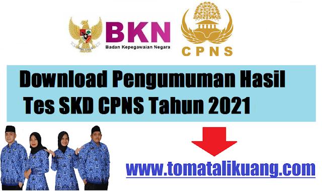 pengumuman hasil tes skd cpns tahun 2021 kemenko kemaritiman dan investasi bkn ri tomatalikuang.com