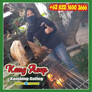 Layanan Kambing Guling Cidadap Bandung, kambing guling cidadap bandung, kambing guling cidadap, kambing guling bandung, kambing guling,