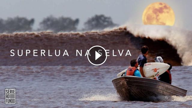 Superlua cria onda rara no meio da selva brasileira