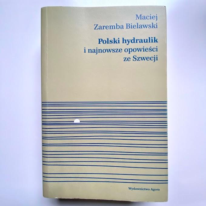 Polski hydraulik i najnowsze opowieści ze Szwecji - recenzja